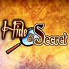 Hide & Secret game