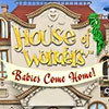 House of Wonders: Babies Come Home game