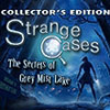 Strange Cases: The Secrets of Grey Mist Lake game
